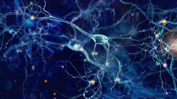 Le netlinking ressemble à un réseau neuronal